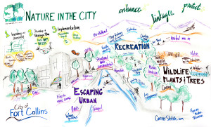 Nature in the City Graphic Chart 10.29.14