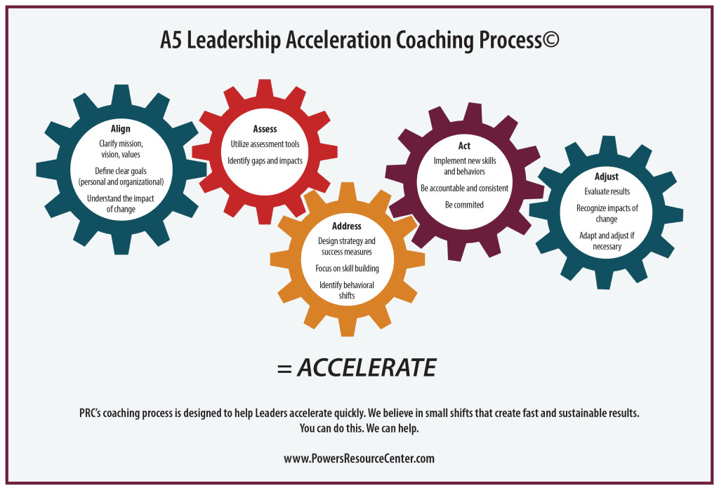PRC coaching process gears